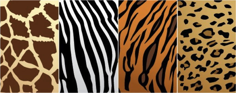 different-zebra & Zebra Print Designs - Stuffed Animals Coffee Mugs and More ...